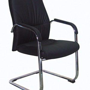כיסאות אורח/המתנה